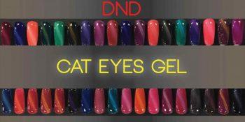 Daisy Nail Design (DND) Full Reviews