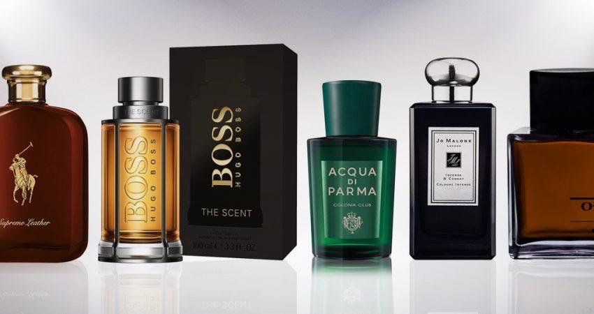 10 Best Perfume for Men | That Women Love