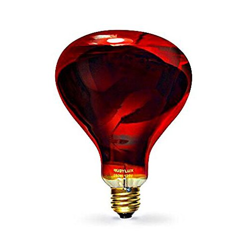 RubyLux Infrared Bulb [2020 Full Reviews]